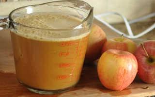 Как хранить яблочный сок